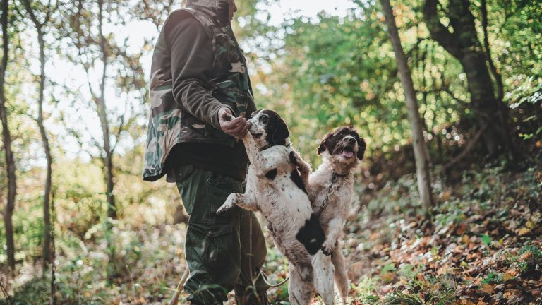 Jägare och två hundar